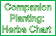companion planting chart for herbs